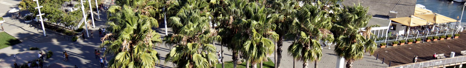 Image of Jack London Square free holiday celebrations ring in the season