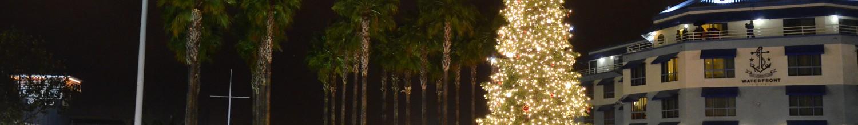 Image of Jack London Square's Tree Lighting Ceremony returns Nov. 30