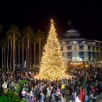 Thumbnail of Jack London Square's holiday Tree Lighting Ceremony is Friday