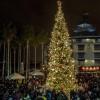 Image of Jack London Square annual tree lighting kicks off the holidays Dec. 1