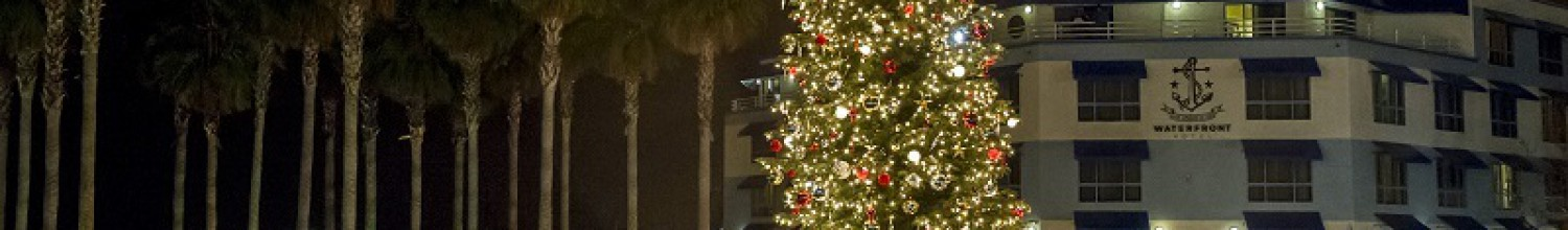 Image of Jack London Square annual tree lighting kicks off the holidays Dec. 1