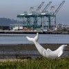 Thumbnail of Port of Oakland's clean-air vision: a path to zero-emissions