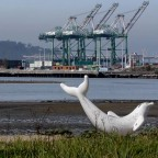 Thumbnail of Port of Oakland approves Seaport Air Quality 2020 and Beyond Plan