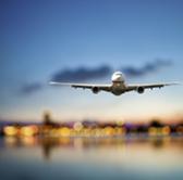 Image of I FLY OAK