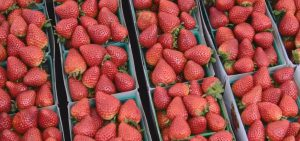 Farmers Market is every Sunday at Jack London Square